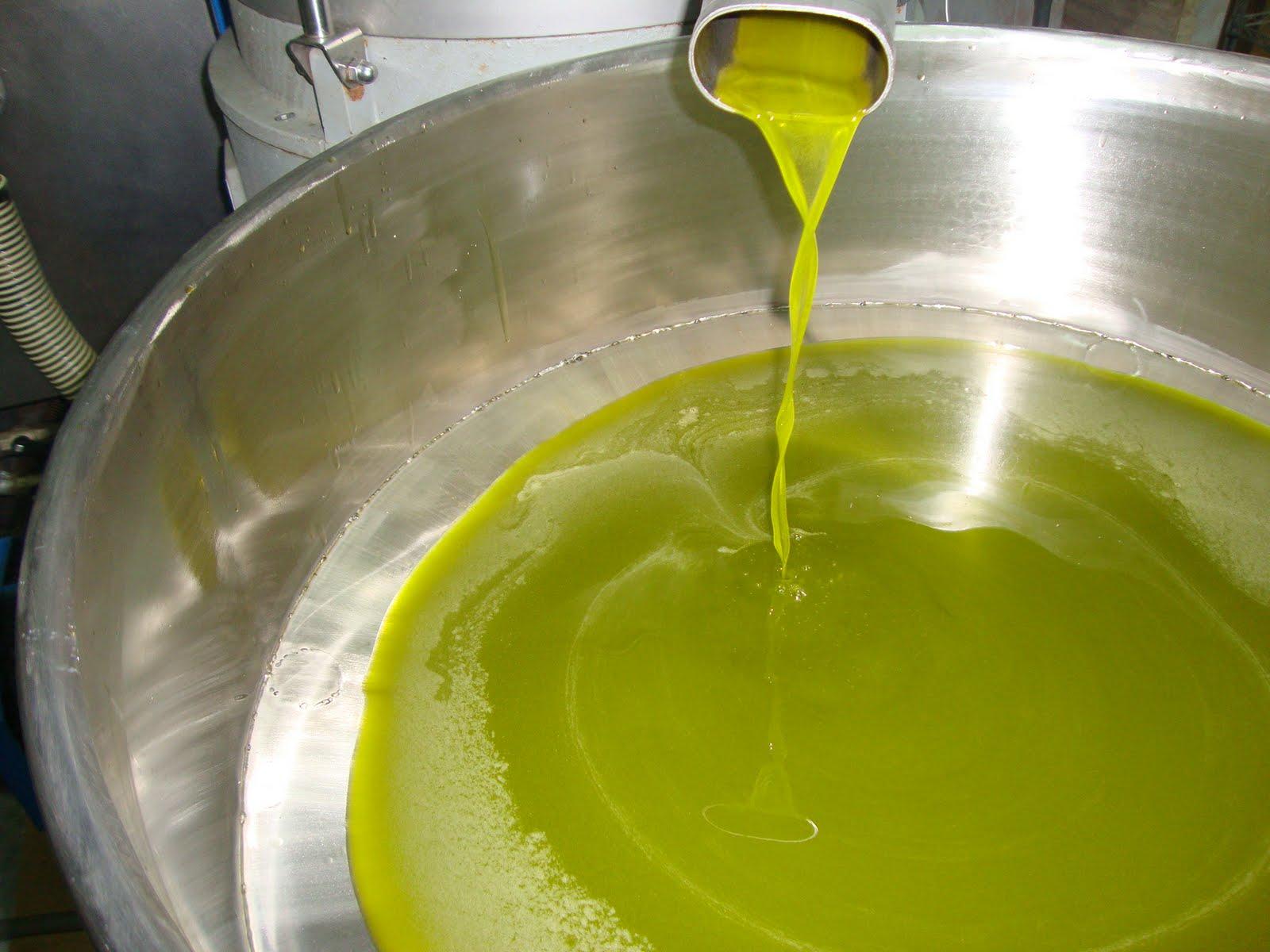 L'OLIO EXTRAVERGINE DI OLIVA è l'olio migliore per la frittura?